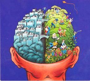 re-brain
